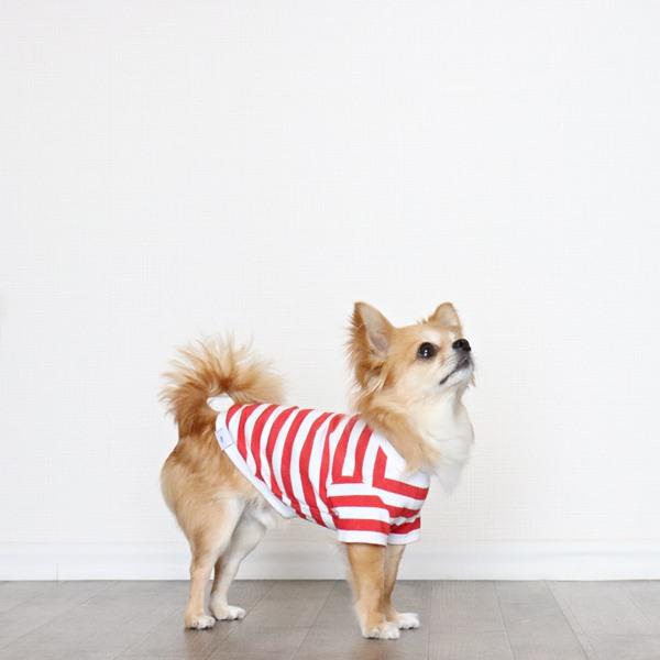 画像1: 蚊よけ&冷感生地のボーダーTシャツ(レッド×ホワイト) (1)