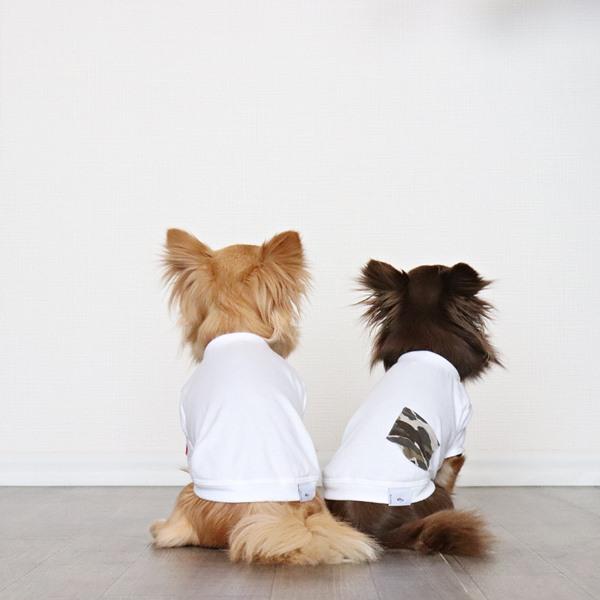 画像1: 蚊よけ生地のTシャツ(ホワイト) (1)