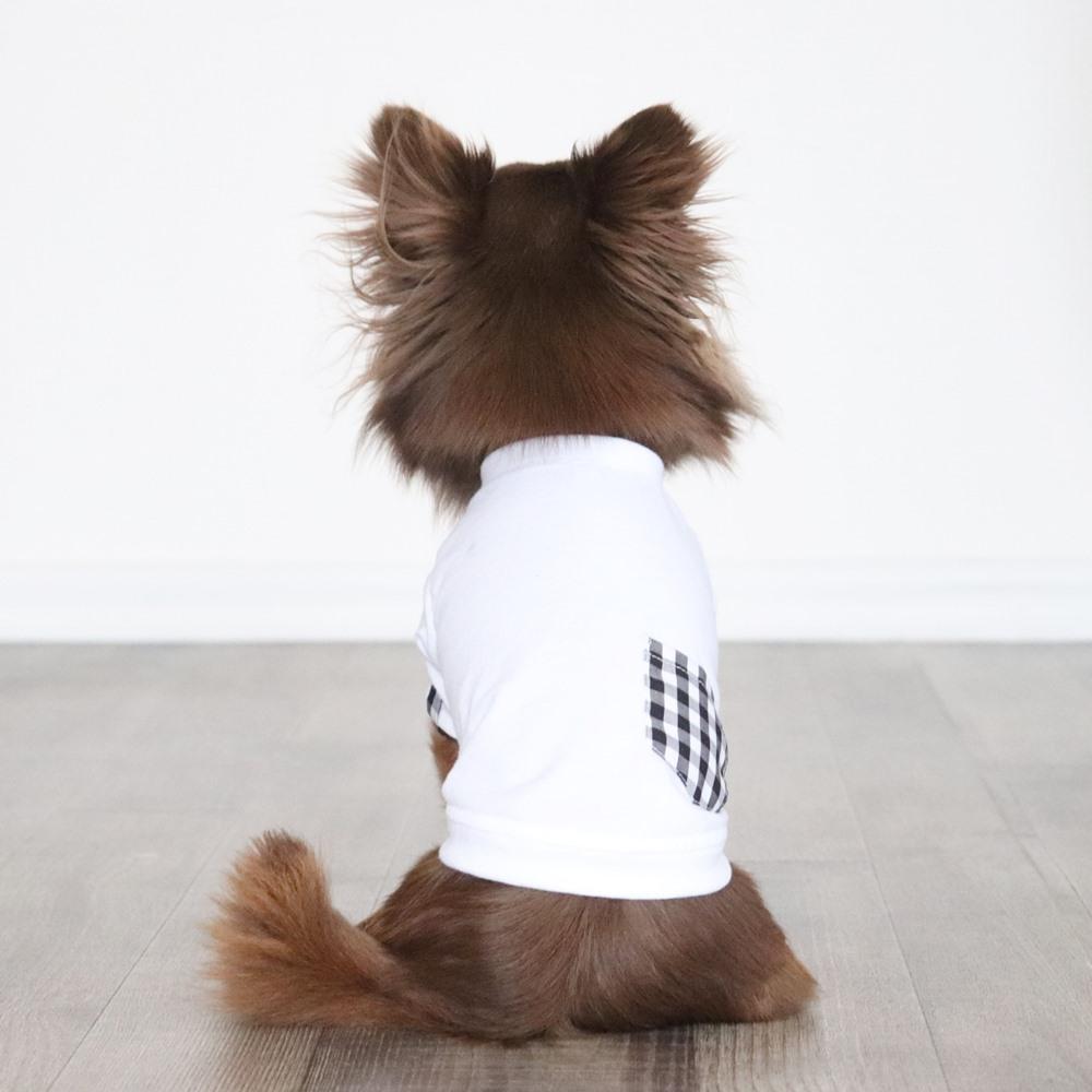 画像1: ギンガムチェックポケットつきTシャツ(ホワイト×ブラックギンガム) (1)